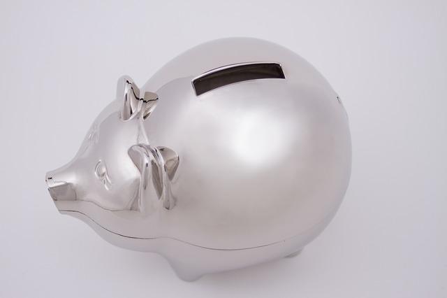 新米ブロガーの収入をリアルタイムにお届けします~退職してから1ヶ月目~